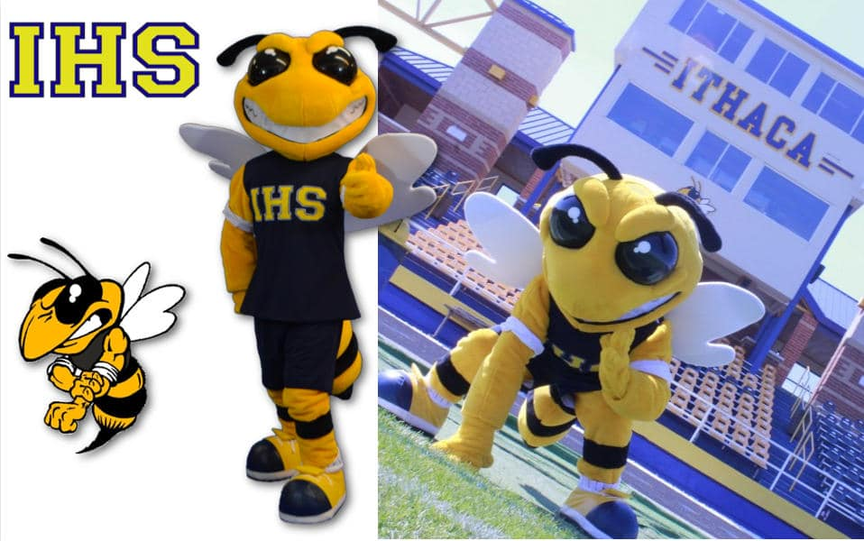 Custom Mascot Costume Yellow Jackets Ithaca High School by Promo Bears
